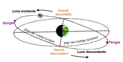 Image 2195